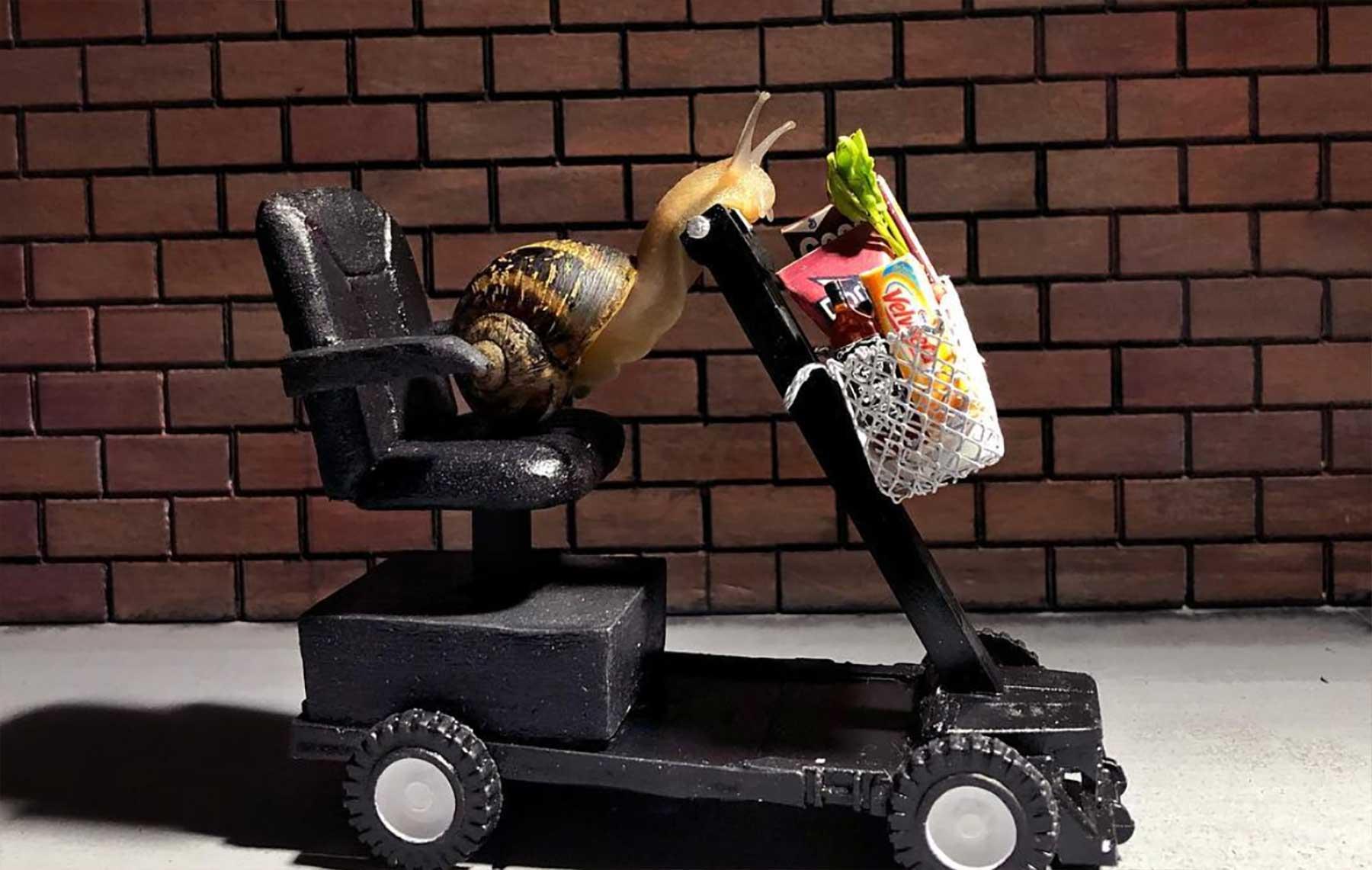 Neue Schnecken-Miniaturhäuser von Aleia Murawski und Samuel Copeland