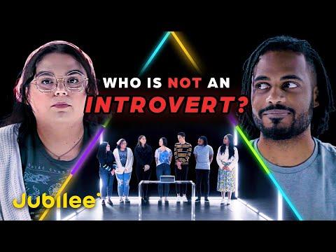 Wer ist der heimliche Extrovertierte unter den 7 Introvertierten?