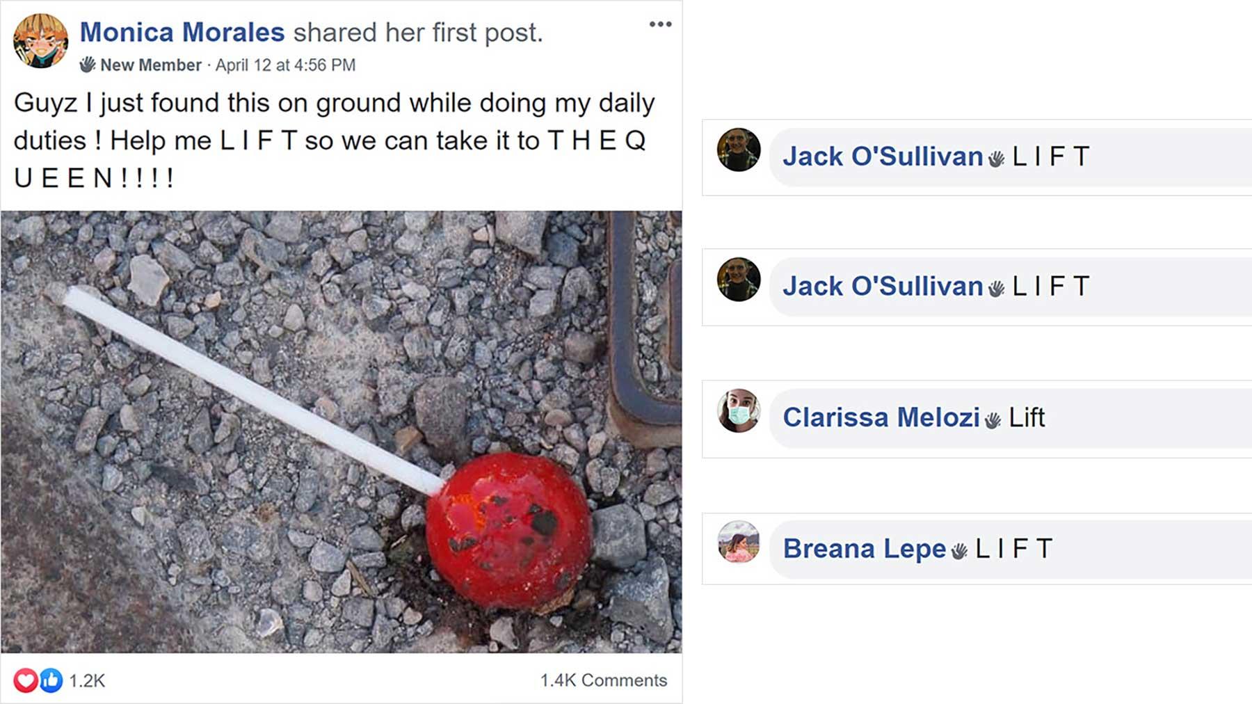 In dieser Facebook-Gruppe tun alle so, als seien sie Ameisen