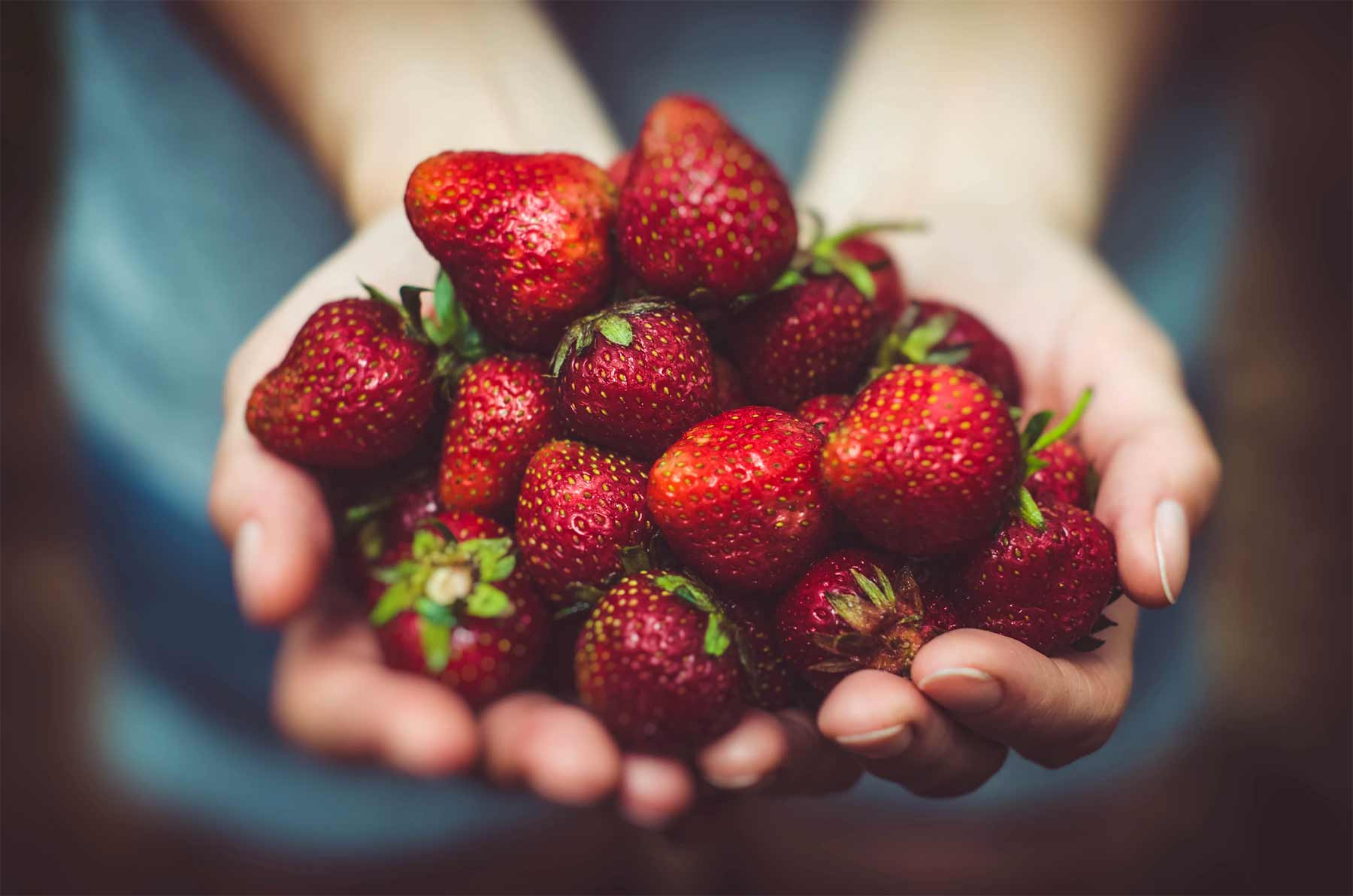 Erdbeeren richtig säubern mit Salzwasser erdbeeren-unsplash