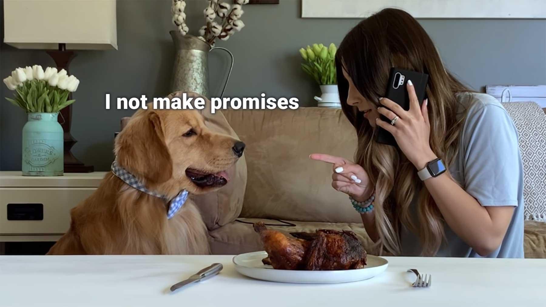 Hund mit gebratenem Hühnchen alleine lassen