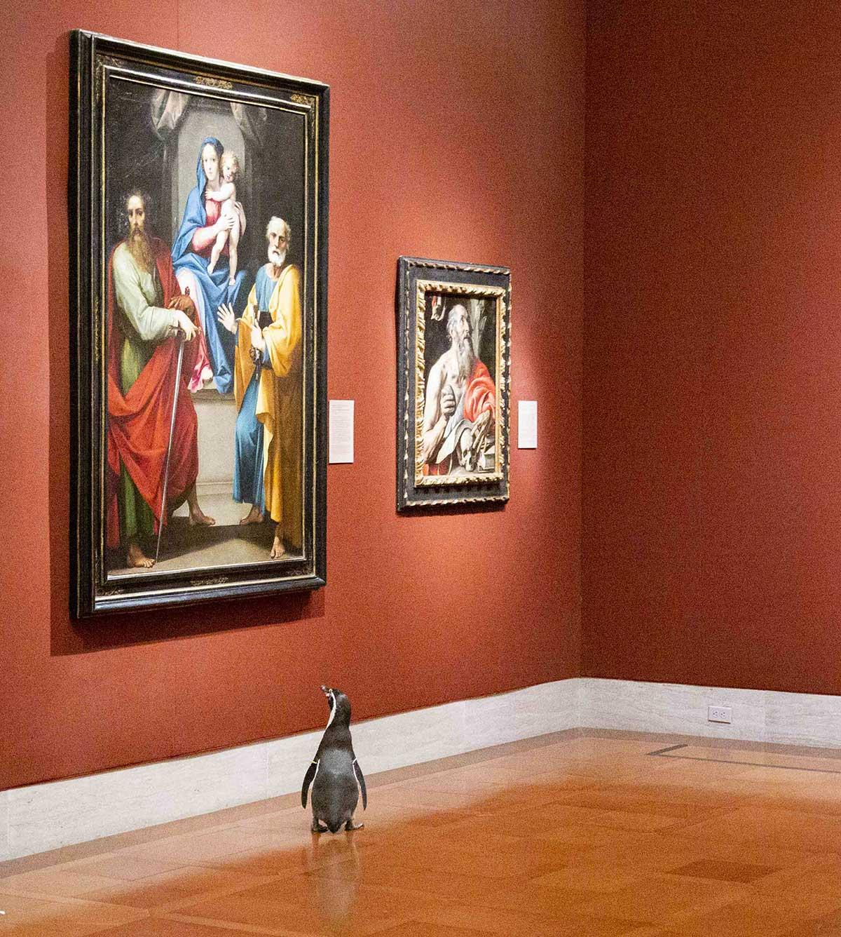 Nur ein paar Pinguine, die durch ein Museum laufen pinguine-im-Nelson-Atkins-museum_02