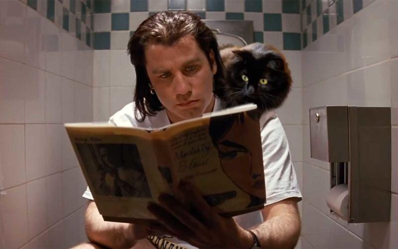 """Wenn eine Katze in """"Pulp Fiction"""" mitspielen würde"""