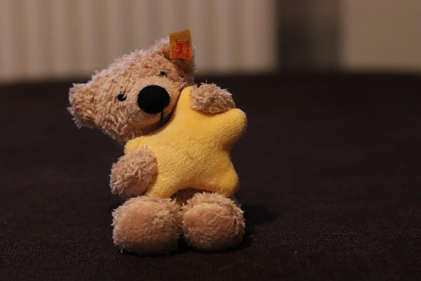 Das große Glück finden - Kurioses zum Thema reich werden teddy-2845134_1920