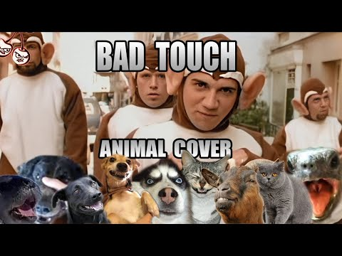 """The Bad Touch"" Animal Sound Cover (Blood Hound Gang)"