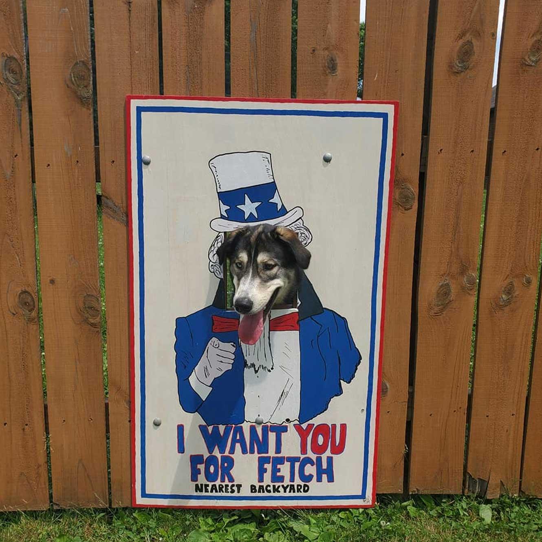 Hundeköpfe vollenden Zaunmotive The-Poland-Dog-Fence_04