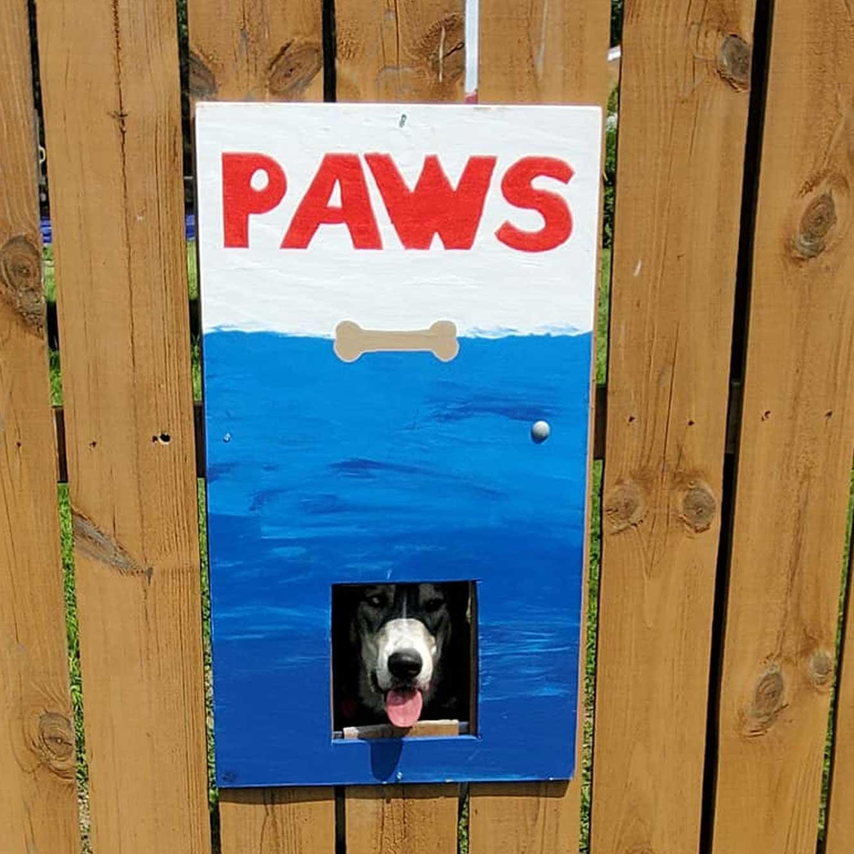 Hundeköpfe vollenden Zaunmotive The-Poland-Dog-Fence_05