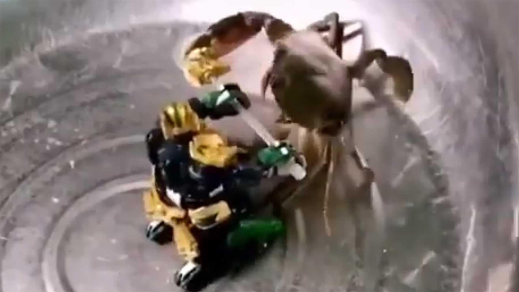 Transformer vs. Krabbe