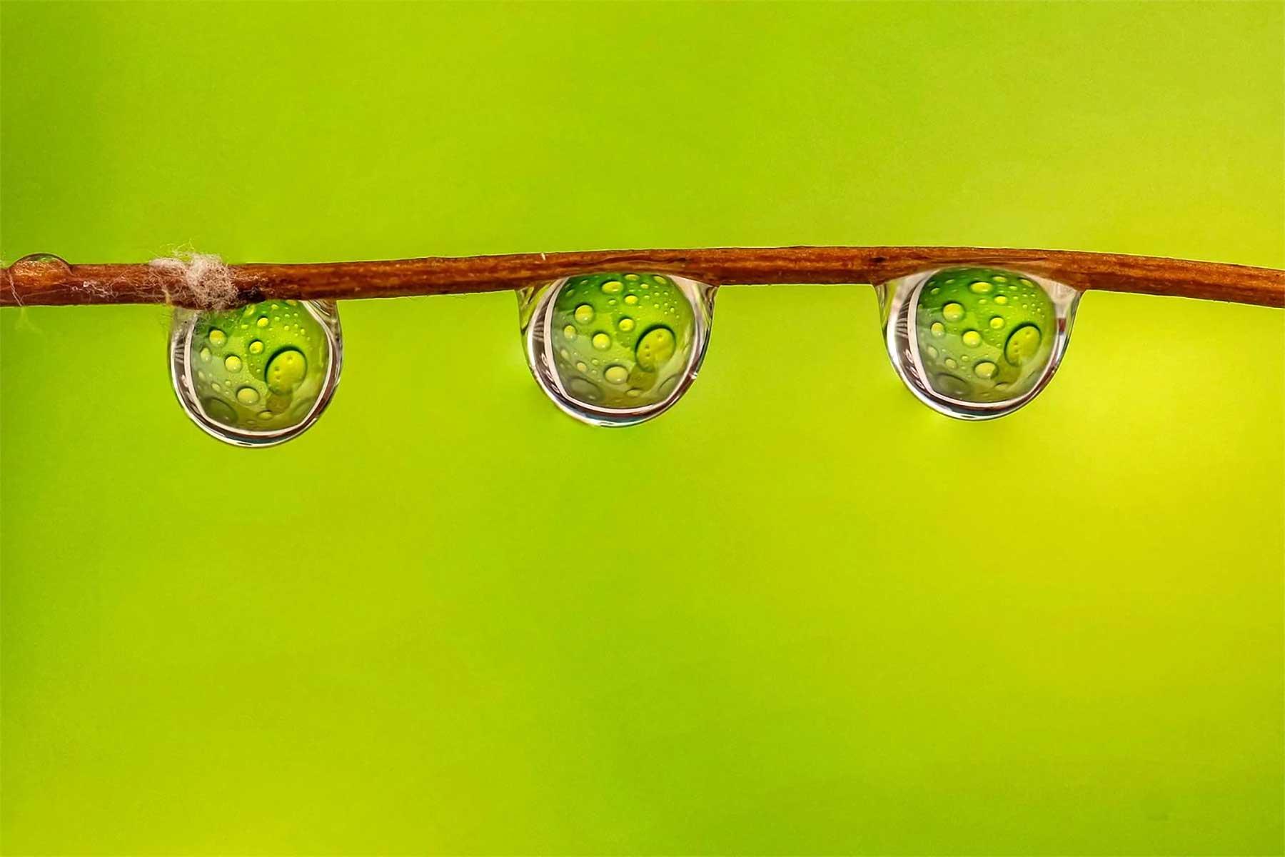 Wassertropfen-Fotografien von António Pereira Antonio-Pereira-Water-Drops-photography_11