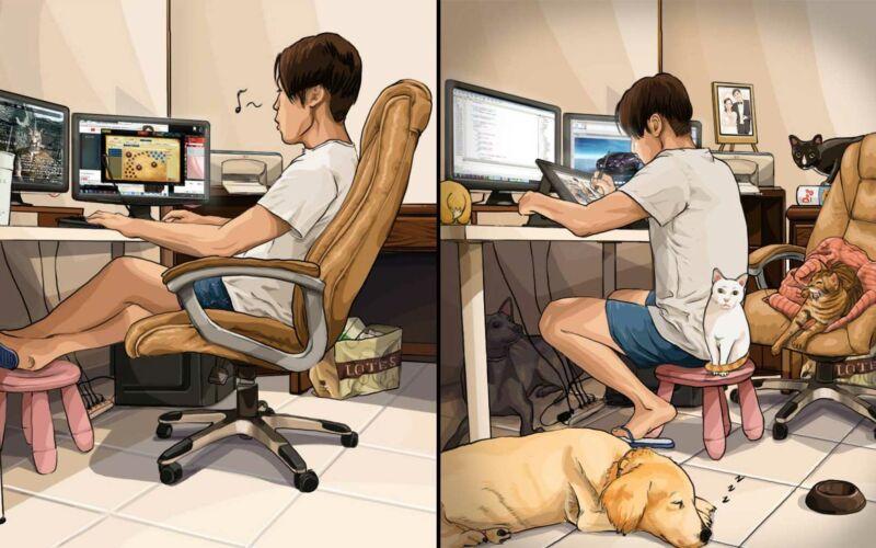 Das Leben vor und nach dem Anschaffen von Haustieren