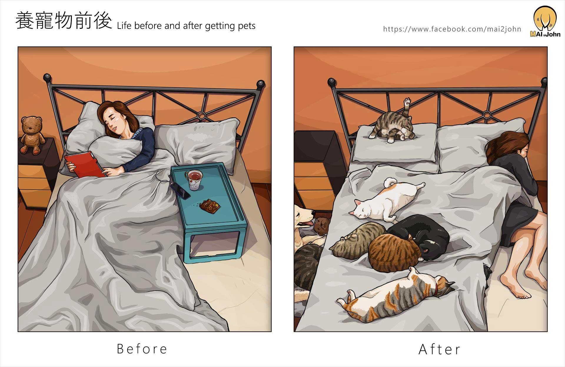 Das Leben vor und nach dem Anschaffen von Haustieren maijohn-life-with-pets_04
