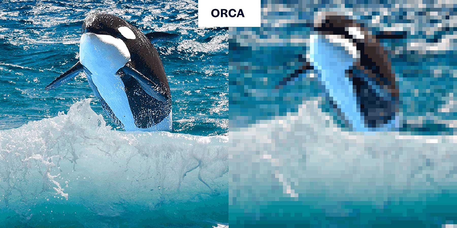 Tierbilder aus so wenigen Pixeln, wie es noch Exemplare davon auf der Welt gibt Aussterbende-Pixel-tiere_03