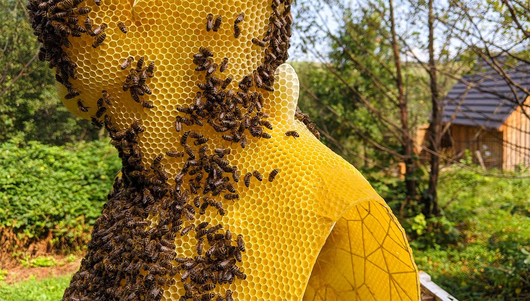 Bienenwachs-Skulpturen von Tomáš Libertíny Tomas-Libertiny-Bienenwachs-skulpturen_02
