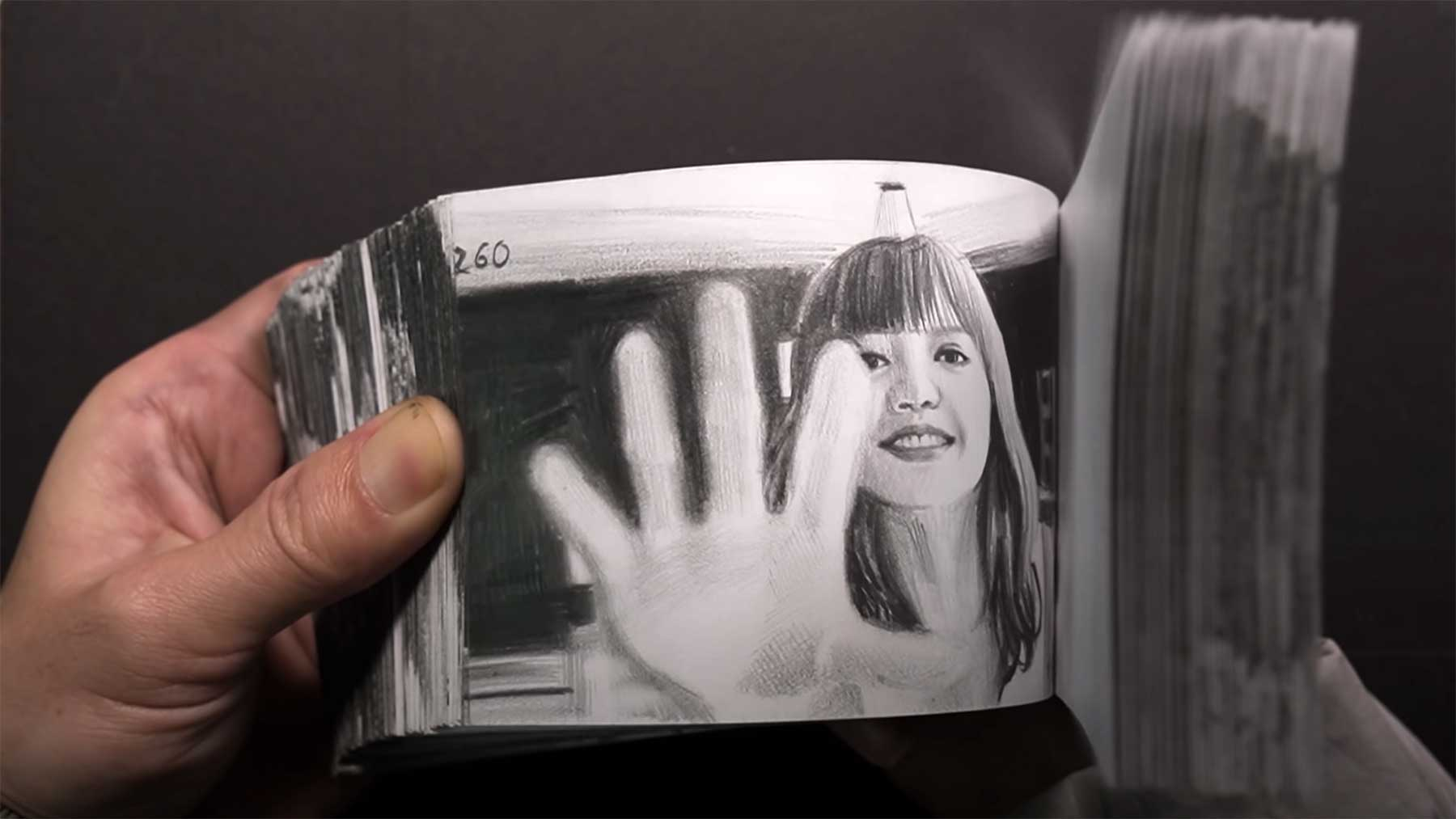 dp Art Drawing hat 100 Tage an diesem Daumenkino gezeichnet