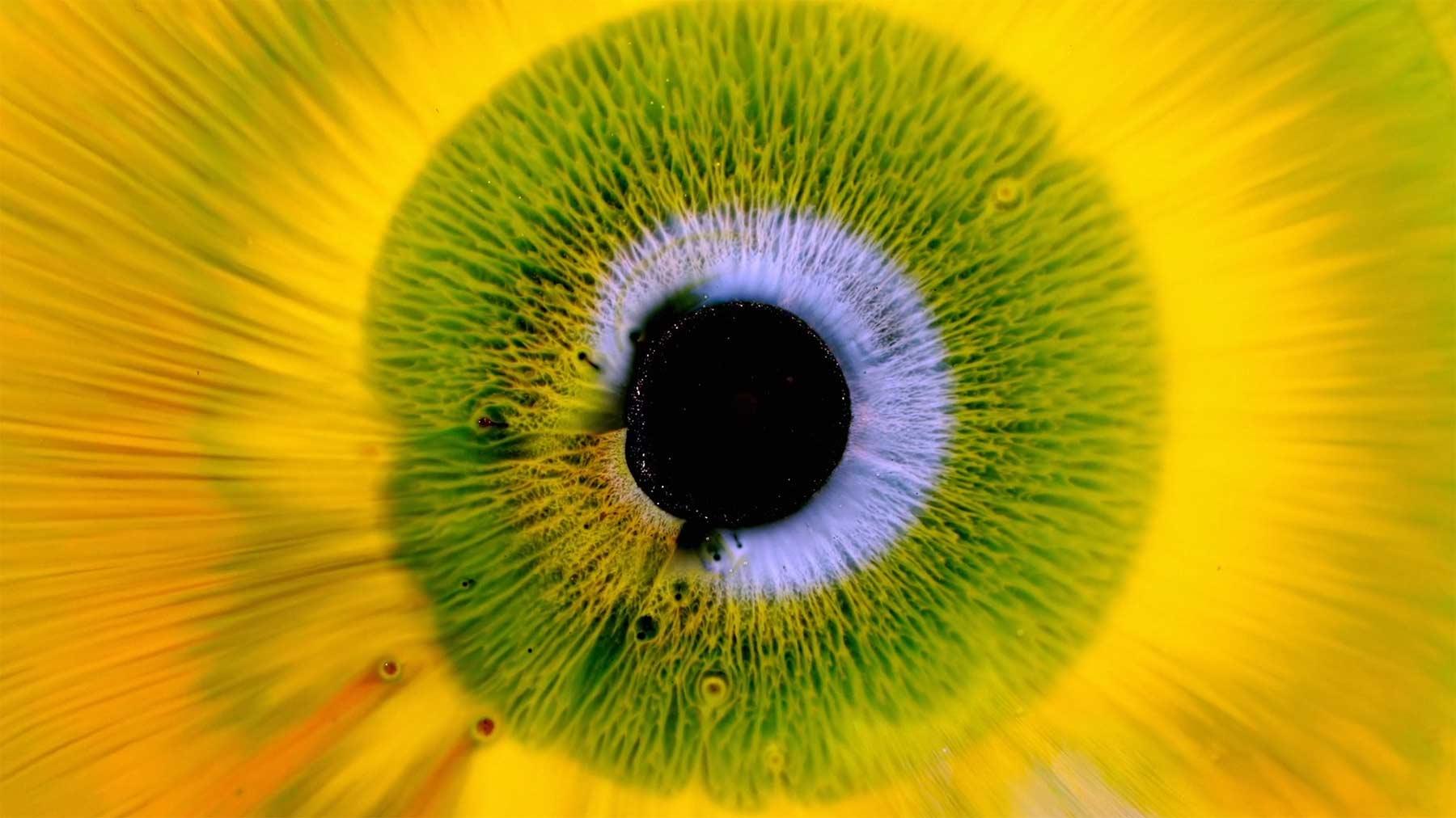 Makro-Aufnahmen von Flüssigkeiten in Iris-Optik heterochromia-iridum