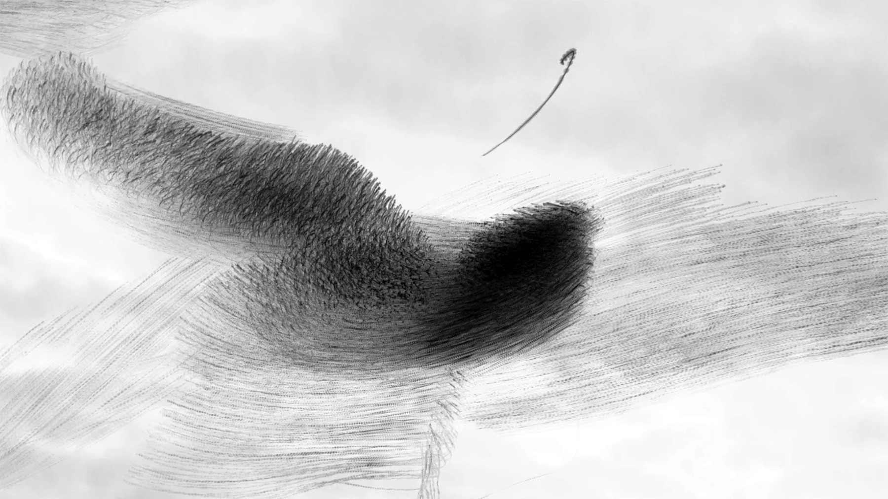 Murmuration: Starenschwarm vs. Adler