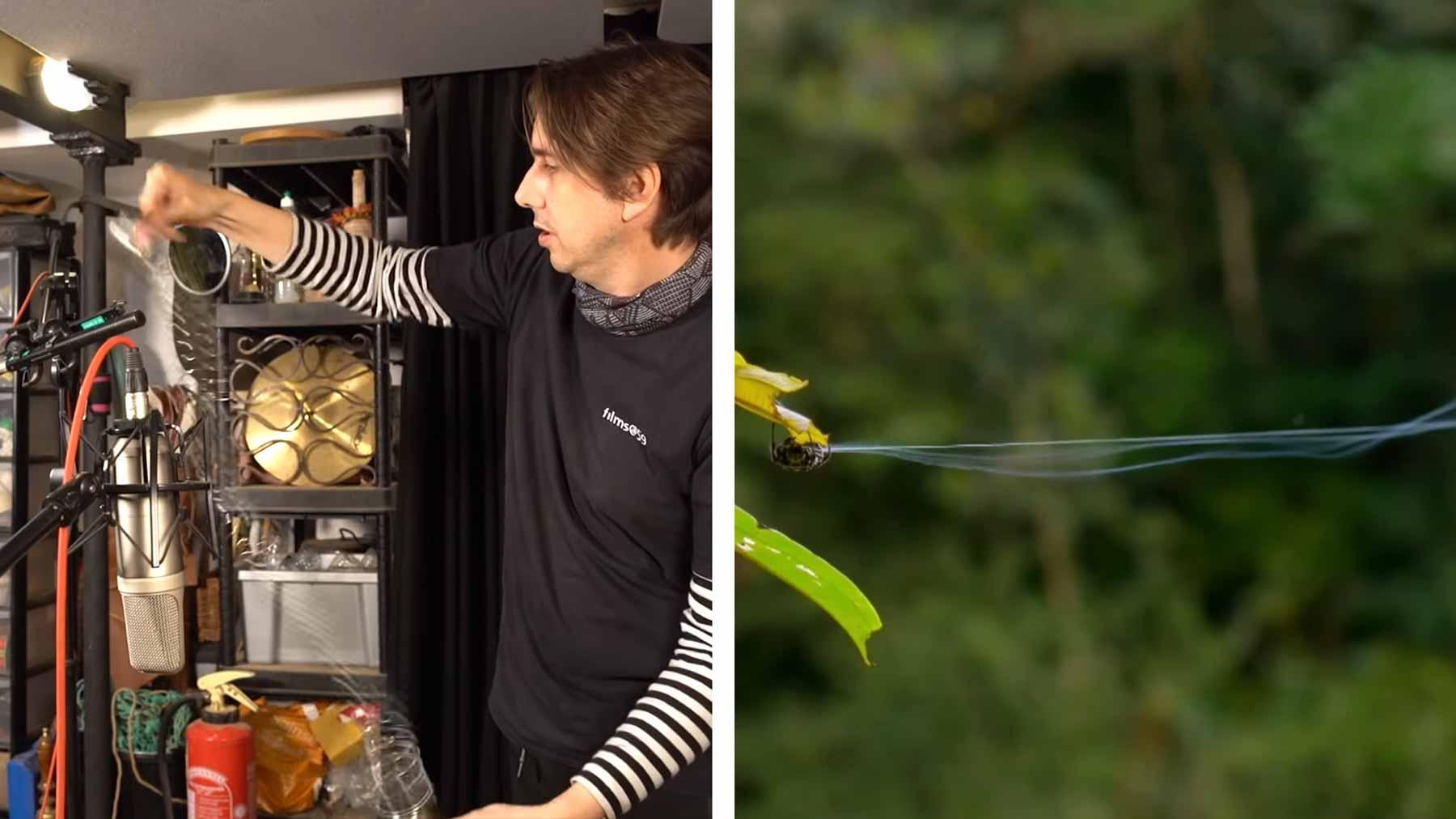 Wie Soundeffekte in Naturdokumentationen gemacht werden