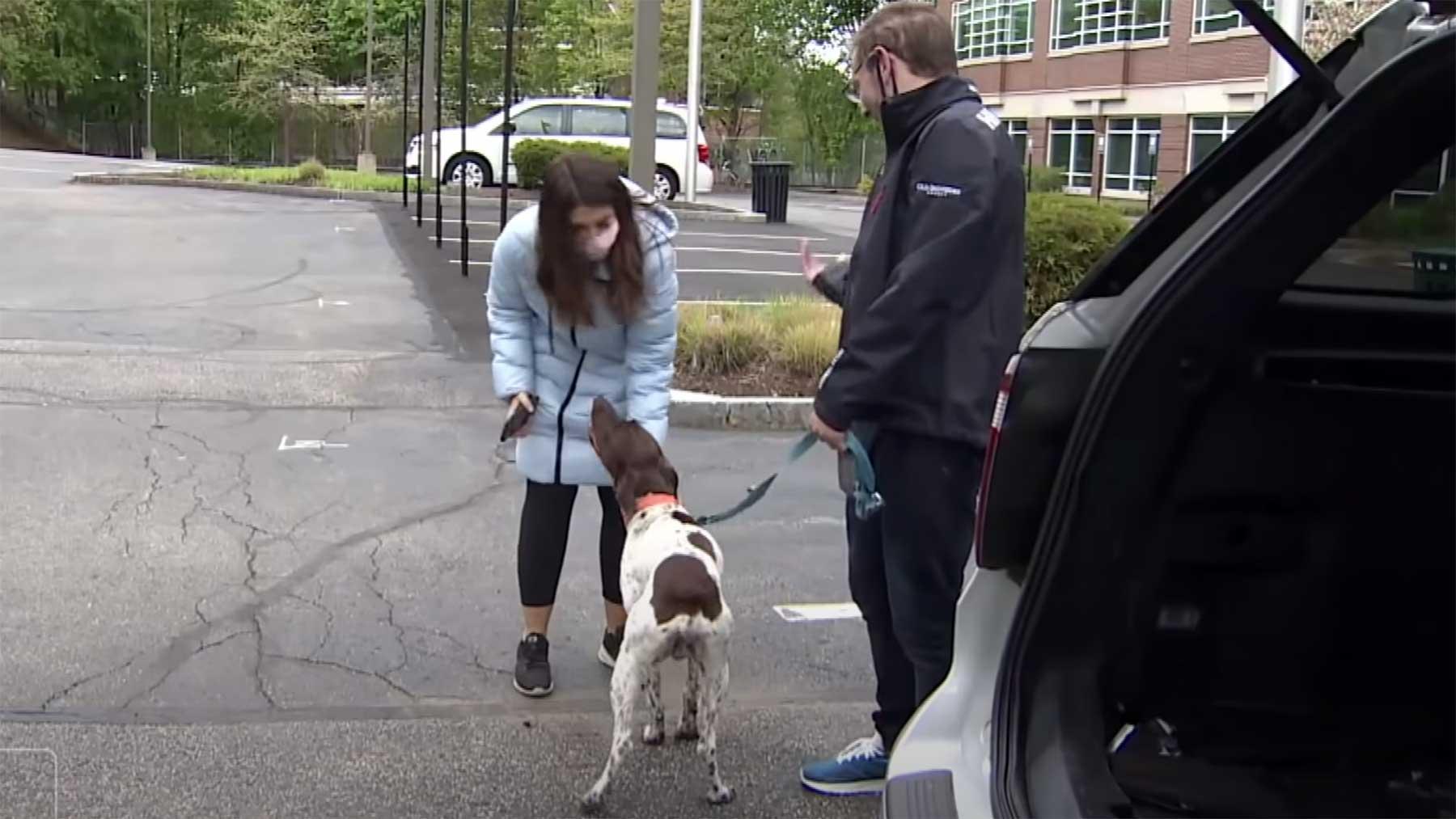 TV-Reporterin sieht entführten Hund während sie darüber berichtet