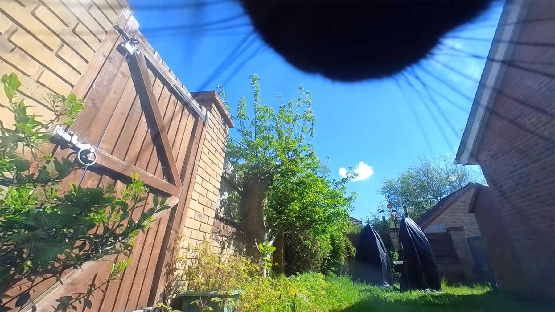 Kleine Kamera zeigt 24 Stunden aus der Sicht einer Katze