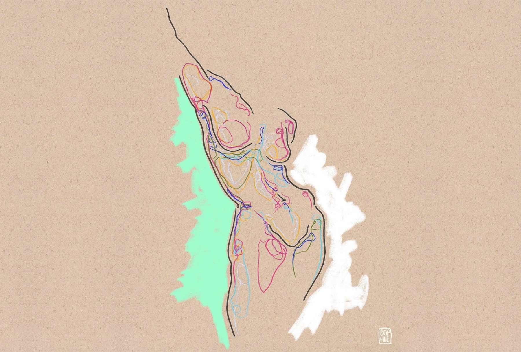 Illustrationen und Zeichnungen von Sophie Sturdevant