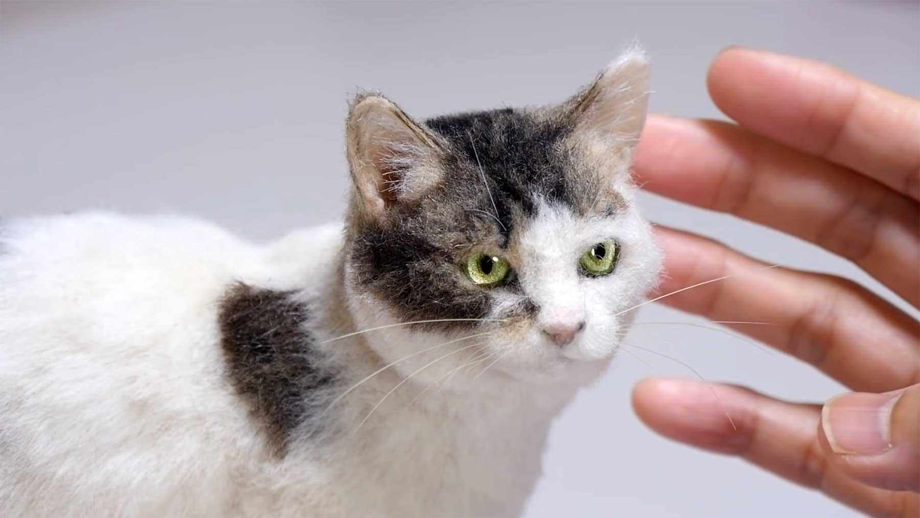 Yamanono erstellt realistisch anmutende Katzen und Hunde aus Filz