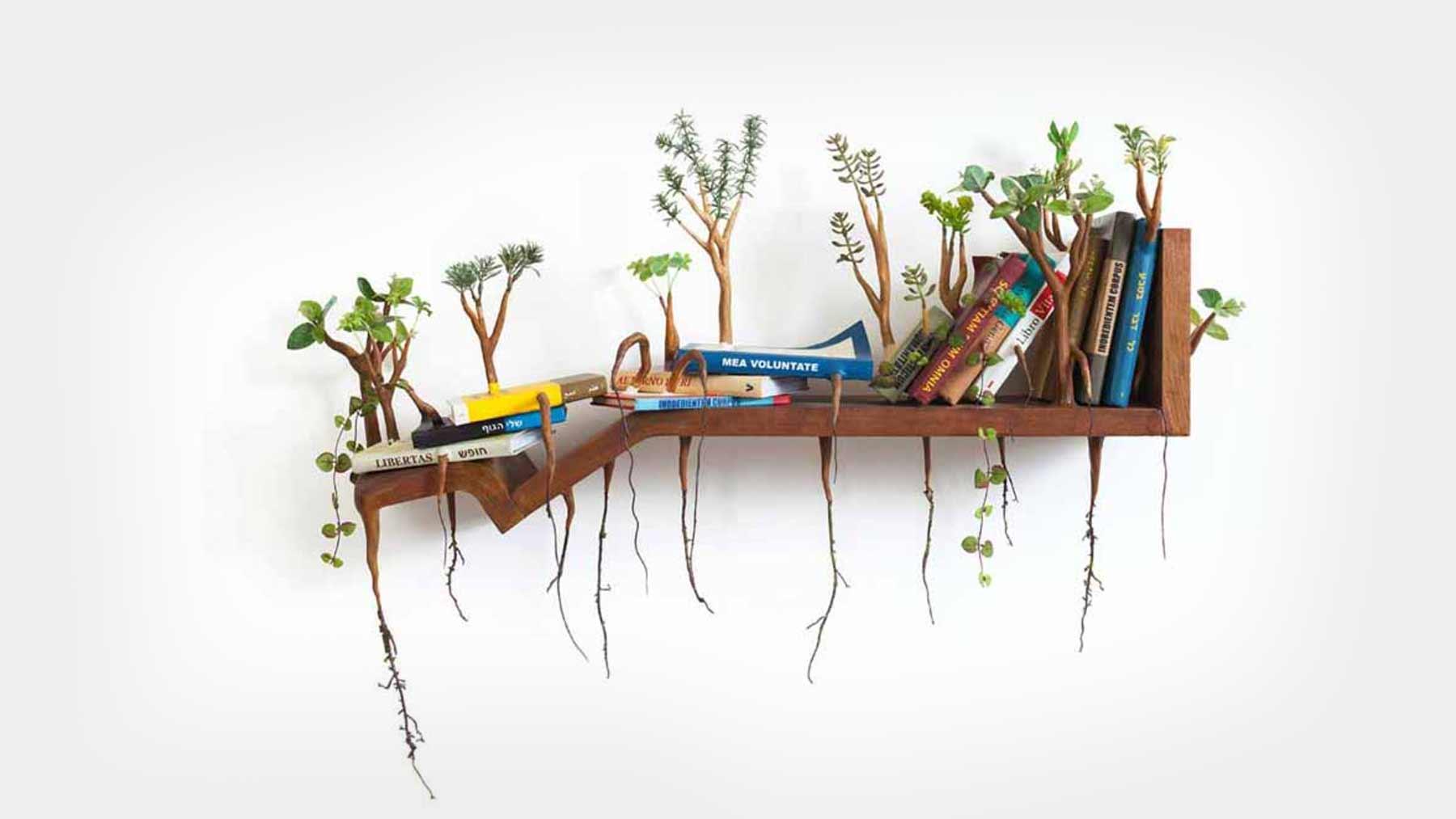Verpflanzlichte Holzgegenstände von Camille Kachani