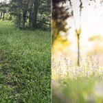Amateur- vs. Profi-Fotograf an selber Location